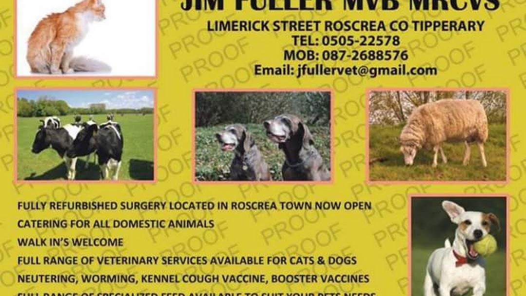 Roscrea Veterinary Clinic - Veterinarian
