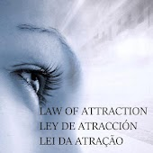 Law of Attraction Quotes &Tips