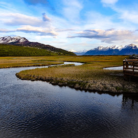 9 PM on The Marsh by Patricia Phillips - Landscapes Travel ( alaska anchorage marshes nightime potter )
