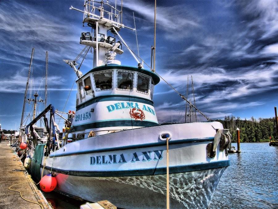 Delma Ann by Christy Sawyer - Transportation Boats