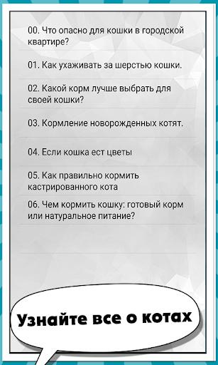 Кошачий справочник