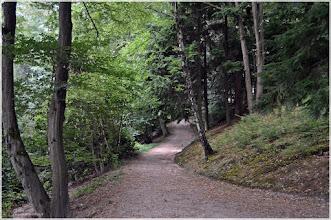 Photo: Jardines. Baden-baden.La Selva Negra . Alemania http://www.viajesenfamilia.it/selva_negra.htm