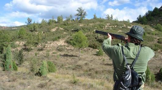 Prohibida la munición con plomo para la caza en zonas protegidas