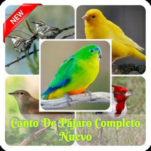 Download Canto De Pájaro Completo Nuevo For PC Windows and Mac apk screenshot 1