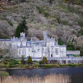 Abbey  by Ginny Serio - Buildings & Architecture Public & Historical ( #castlehunnter,  )