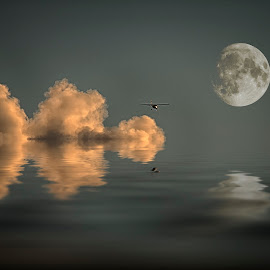 flight to the moon by Egon Zitter - Digital Art Places ( flight, reflection, moon, airplane, sea, ocean )