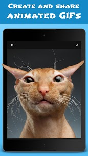 Download Jellify – Funny Photo Effects App For Android 4