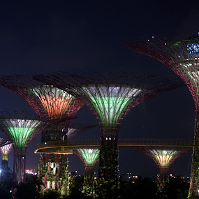 Color lights by Saravanan Veeriah - Buildings & Architecture Other Exteriors ( head lamps, tail lamps, light photography, singapore at night, light )
