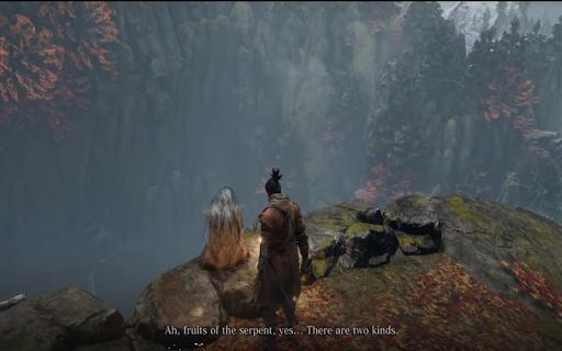 sekiro shadows die twice screenshot 2
