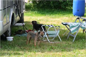 Photo: Camping auf Border-Art