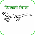 Chhipkali girana (in Hindi) icon