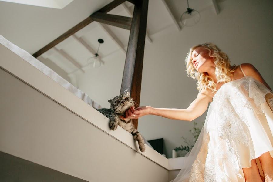Wedding photographer Dima Gorbunov (dimi3i). Photo of 29.07.2015