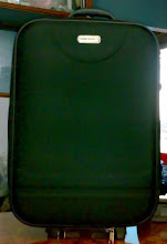 Photo: Suitcase Trolley-397