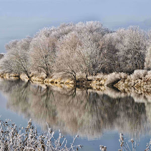 01 Frost along the river.jpg
