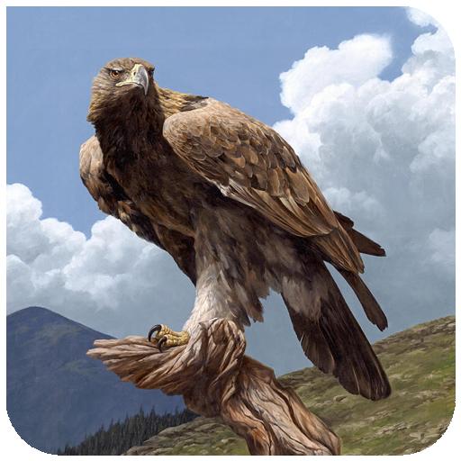 Eagle Walllpaper