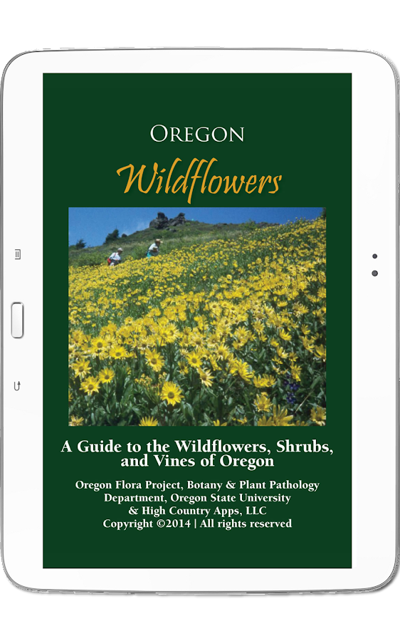 Oregon Wildflowers- screenshot