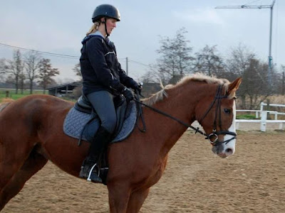 Dressage riding in Belgium