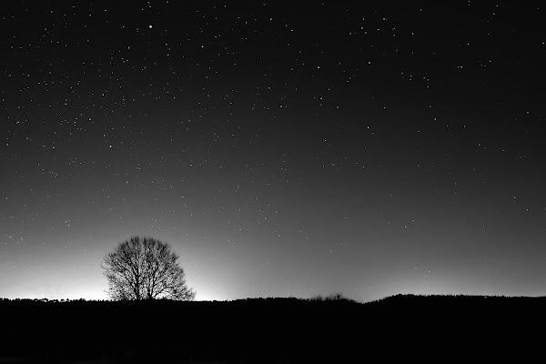 La quiete della notte. di effeenne