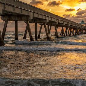 Sunrise at the Pier by Jay Stout - Buildings & Architecture Bridges & Suspended Structures