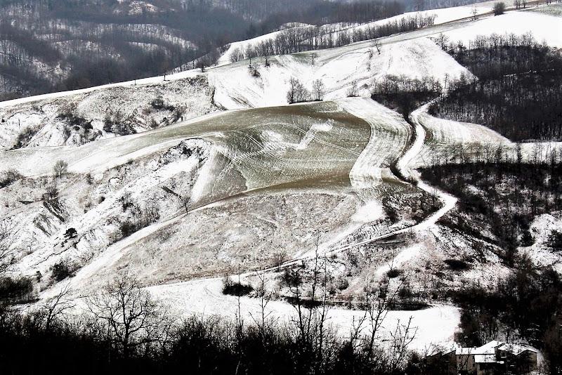 Le sfumature dell'inverno di paolo-spagg