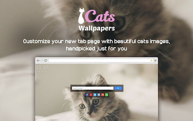 Cats Wallpapers New Tab