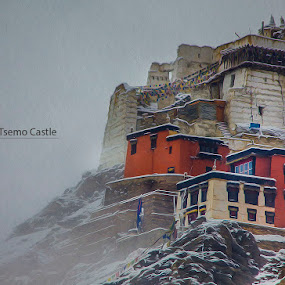CASTLE TSEMO by Inderjit Singh - Landscapes Mountains & Hills ( leh, inderanim, ladakh, landscapes, hues )
