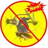 Anti-insect simulator
