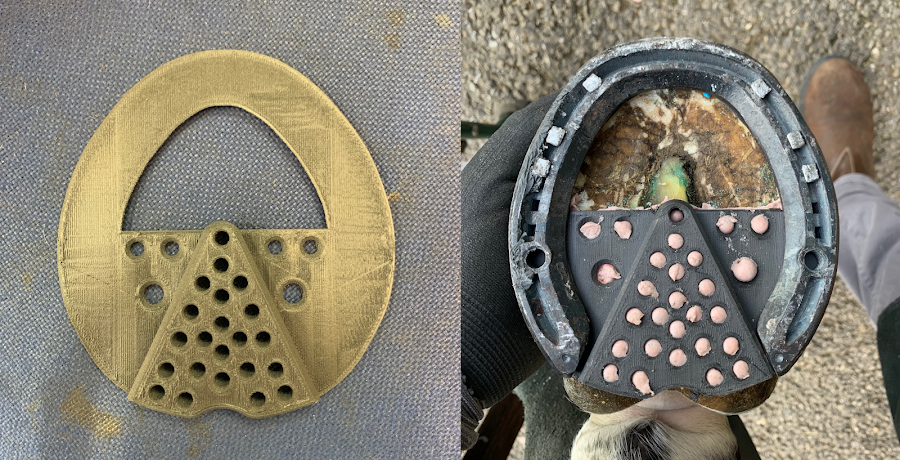 An example of a 3D printed interface in conjunction with a traditional horseshoe.