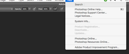 Adobe product updates greyed out