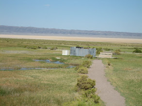 Photo: Natural hot springs in Alvord desert.