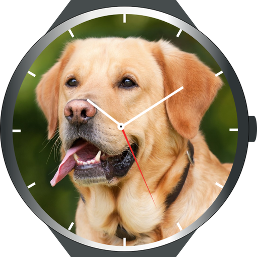 Dogs Watch Faces