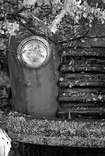 Photo: My submission for #HistoryThursday curated by +Matt Shalvatis.  An old Chevy flatbed truck at my in-laws.