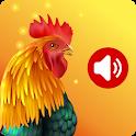 Animal Ringtones - Animal Wallpaper Bird Ringtones icon