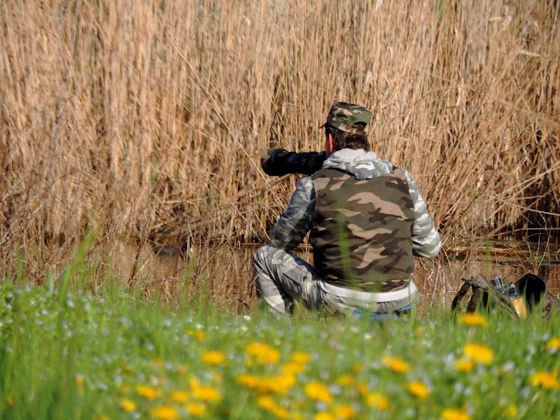 birdwatching di renzo brazzolotto