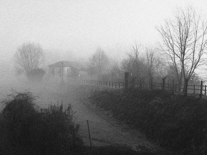 Nebbia  di donyb