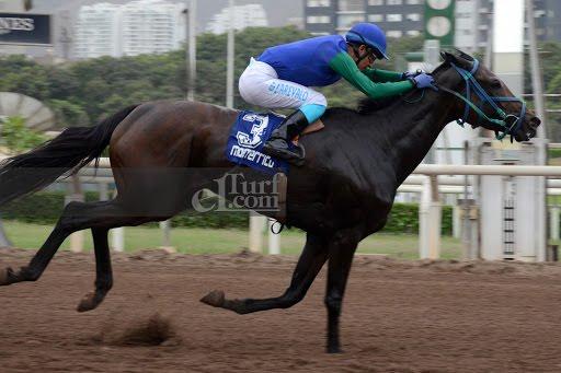 Mrs Hope (Preachintothedevil) conquista Handicap (1000m-Arena-MONT).