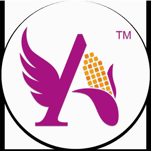 Angel Recipe App