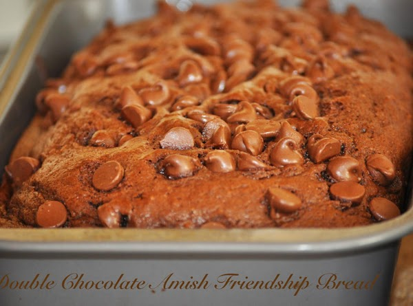 Chocolate Amish Friendship Bread   Omit cinnamon and vanilla pudding from the basic recipe and...