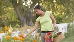 La primavera es la estación de la floración por excelencia