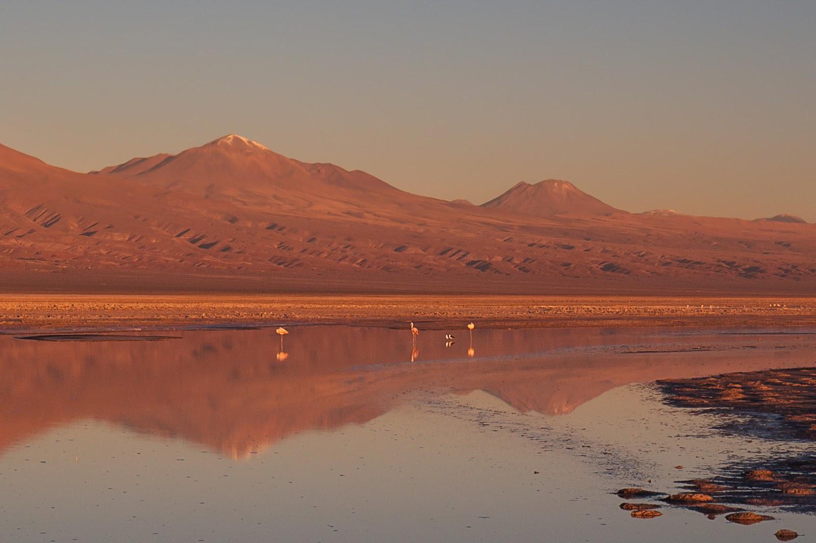 На край света в одиночку: Патагония, Остров Пасхи, Атакама. Апрель-май 2019.