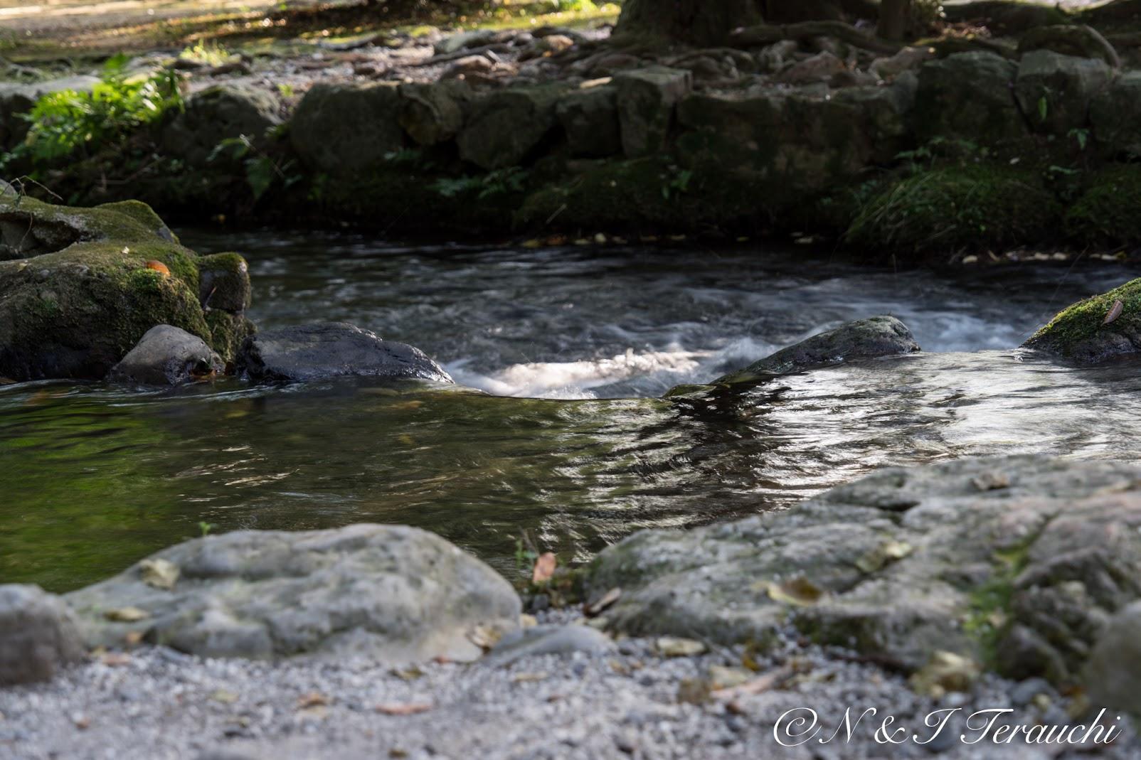 神聖なる清流がさざめく小川