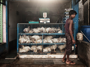 Photo: Chickens 'n' Eggs - early morning preparations somewhere in a slum in Mumbai. www.michiel-delange.com
