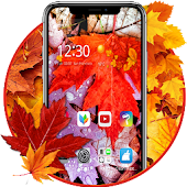 Red Fall Autumn Theme Android APK Download Free By Backgrounds And Anime Launcher