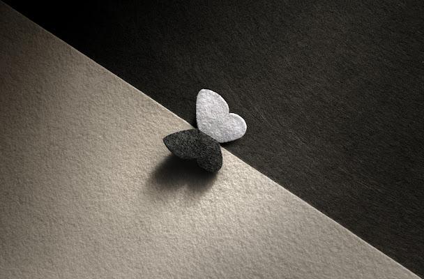 wings di bi