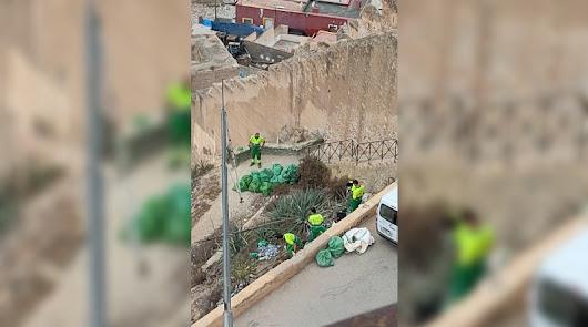 """Amigos de la Alcazaba: """"por fin"""" el Ayuntamiento limpia el entorno del monumento"""