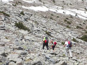Photo: Et là un Lagopède nous a surpris dans la Montée au Cincreus