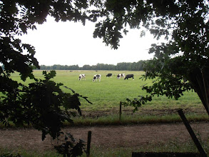 Photo: Puur Natuur in Limburg