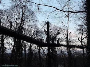 Photo: austria, travel, zoological, zoo, garden, vienna, wien