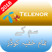 Secret Codes of Telenor