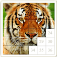 Tile Puzzle.. file APK for Gaming PC/PS3/PS4 Smart TV